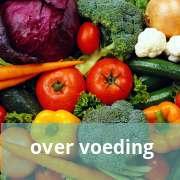 /meer-over-voeding